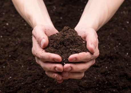 التربة للهبوط