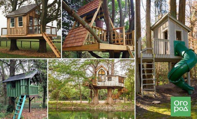 : домик на дереве