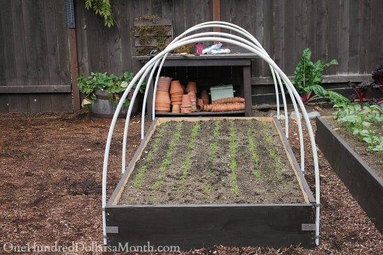 Plans Build Raised Garden