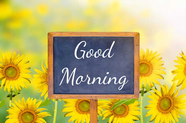 Good Morning Flowers Pictures and Graphics