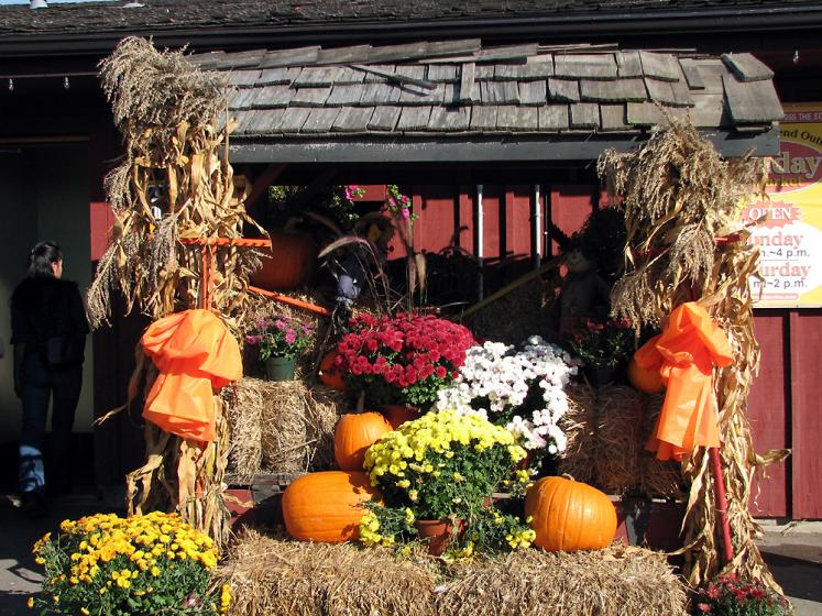 Decoration ideas for fall festival   Decoration Ideas Canada Ontario Photos Fall St Jacobs fall decorations