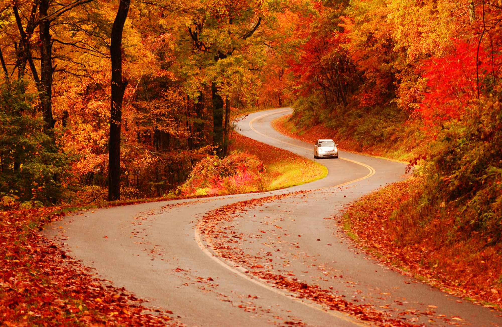 Fall Parkway Ridge Virginia Foliage Blue