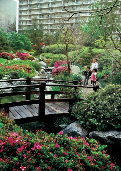 Pacific Horticulture Society   California Japanese Style Gardens     Springtime in the James Irvine Garden  Photograph by Ed Ikuta   See more at