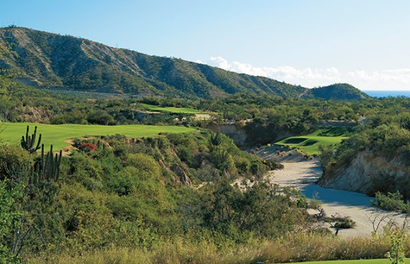 San Jose del Cabo Golf   Palmilla Golf Club    52 624 144 5250 Pamilla Golf Club s Courses