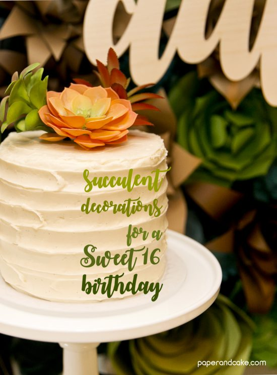 Succulent Themed Birthday Party Paper And Cake Paper And
