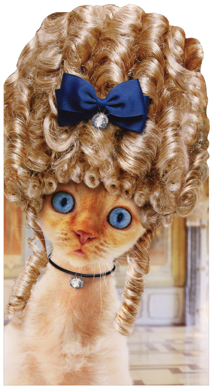 Cat In Old Fashioned Wig Oversized Funny Humorous