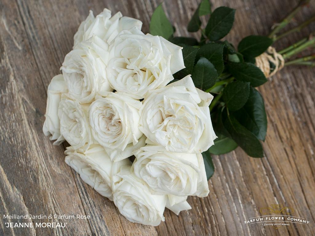 Fresh Rose Face Cream