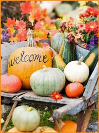 Fall Harvest Party Ideas Country Hoedown