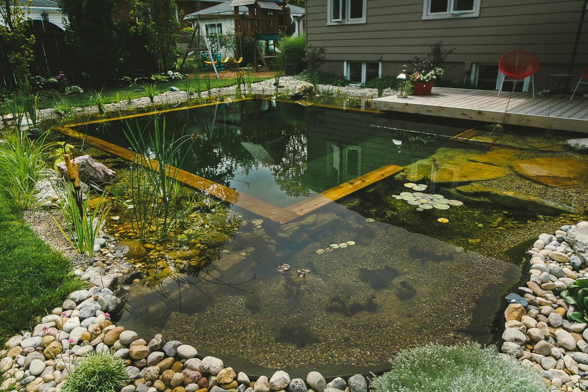 Making Natural Pond