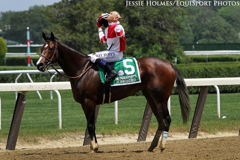 Champion Songbird Repels Paid Up Subscriber To Win Ogden