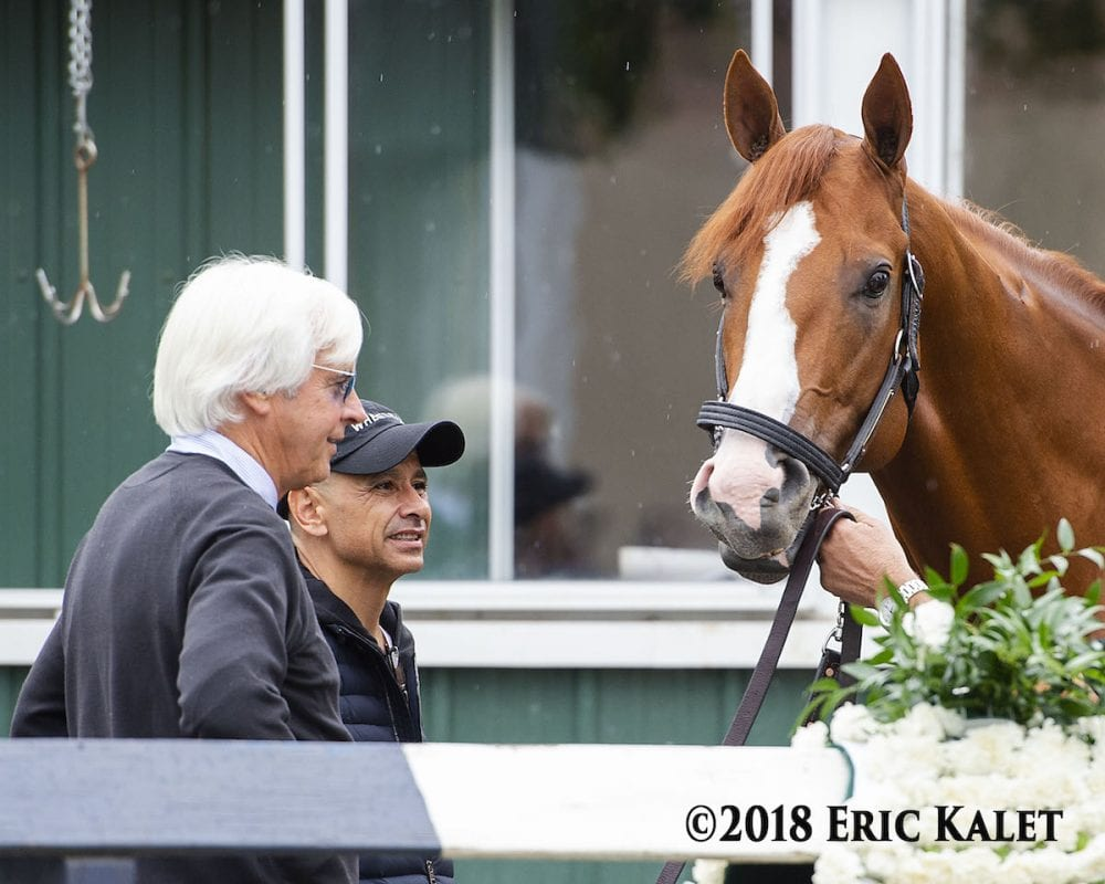 San Carlos Appearance By Justify Highlight Saturday S