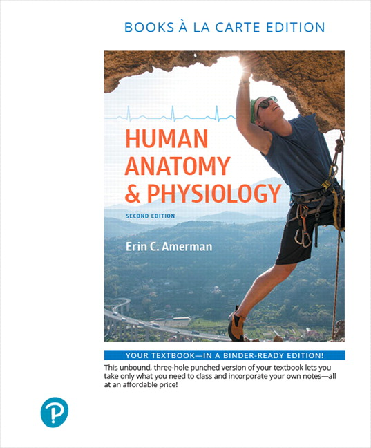 Anatomy And Physiology Pearson Edition
