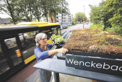 Quicker to a climate-proof Utrecht Southwest area