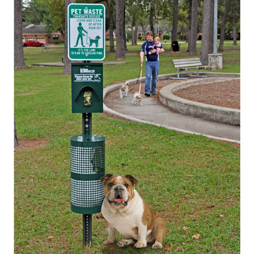 Choosing the Right Dog Cleaning Station For Your Dog's Waste Management Needs
