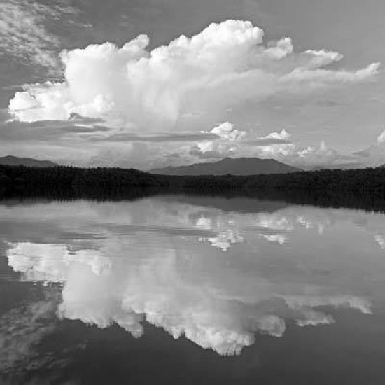 How To Take Black And White Landscape Photos Photography