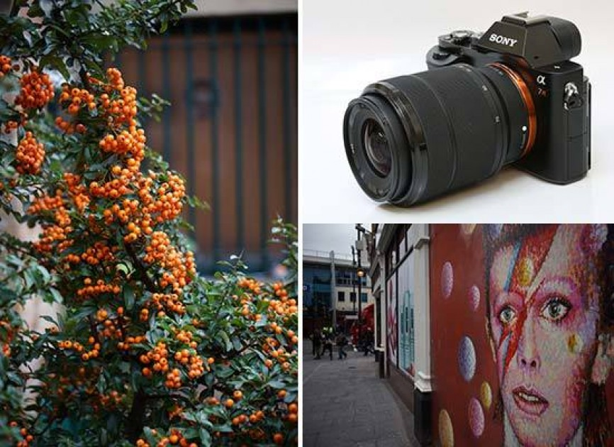 Sony Fe 28 70mm F 3 5 5 6 Oss Sample Images Photography Blog