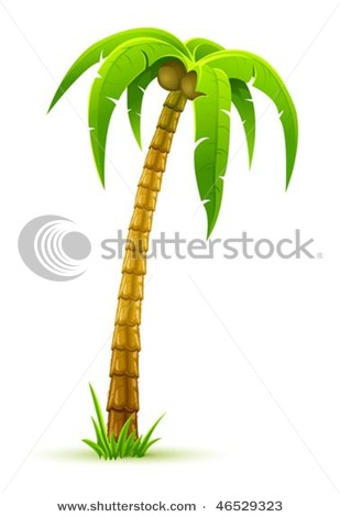 Picture Of A Coconut Palm Tree In A Vector Clip Art Illustration