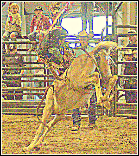Bronc Riding - Pinedale Online News, Wyoming