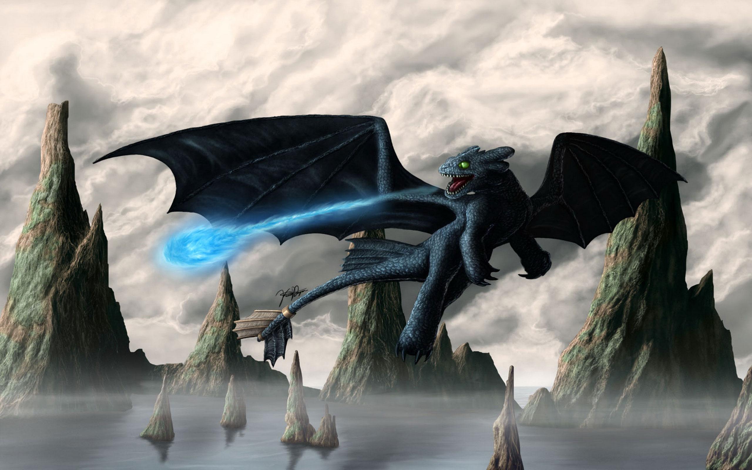 Fury Toothless Hd Night Wallpaper