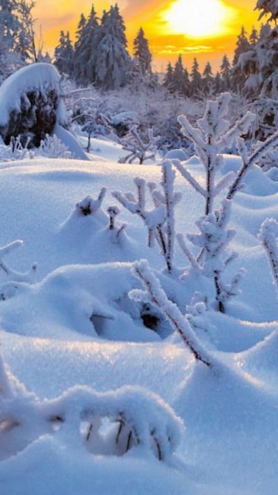 Free Download Winter Wallpapers for Iphone   PixelsTalk.Net