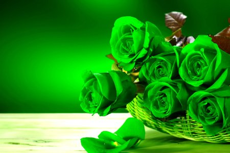 Rose Flower Wallpaper HD   PixelsTalk Net Green Roses Folwers HD Wallpapers Desktop