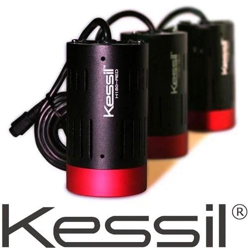Kessil Led Lights