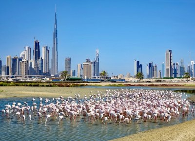 25 Top-Rated Tourist Attractions in Dubai   PlanetWare