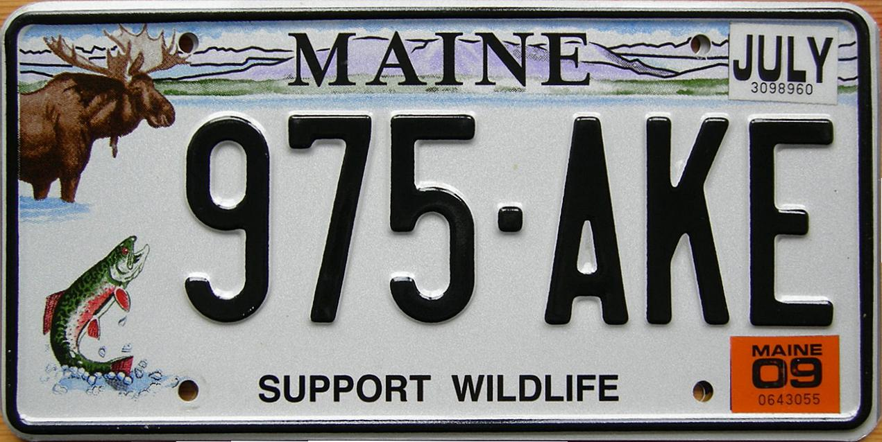 Current Florida License Plates