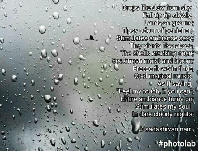 Rain Poems Imagery
