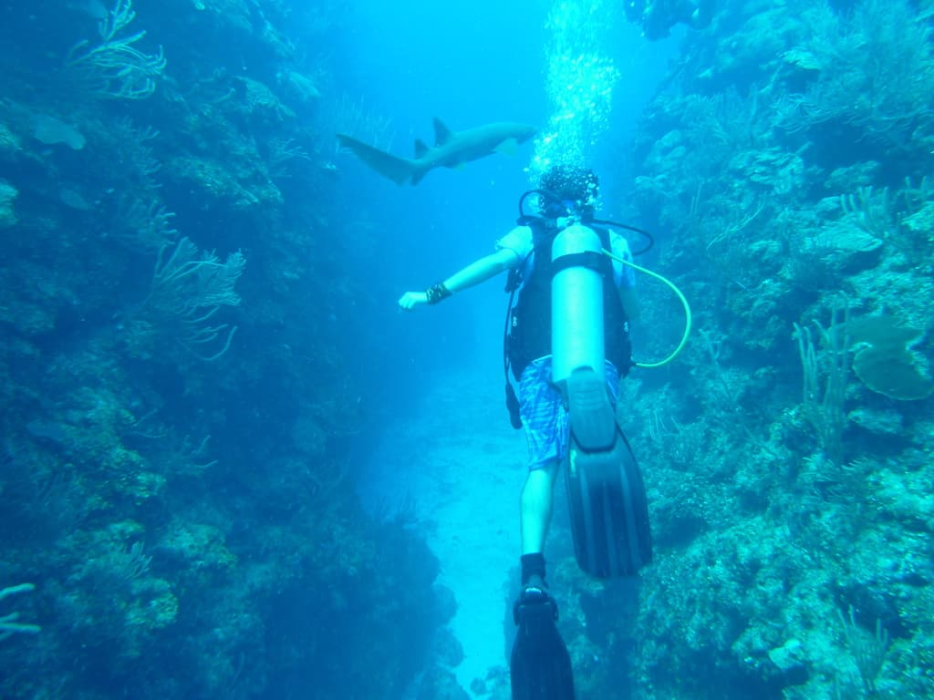 Scuba diving in Belize, Caye Caulker Belize, Caye, #CayeCaulker