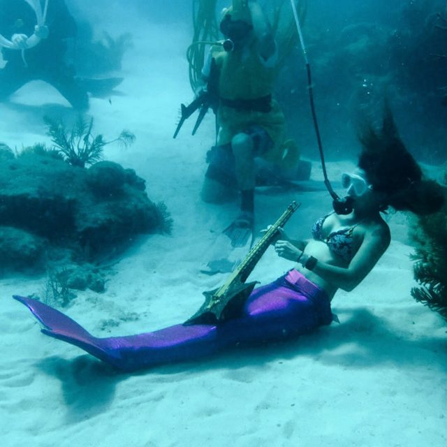 Key West Excursions, what to do in Key West