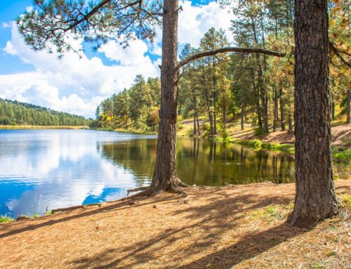 A Hidden Gem – Ruidoso New Mexico