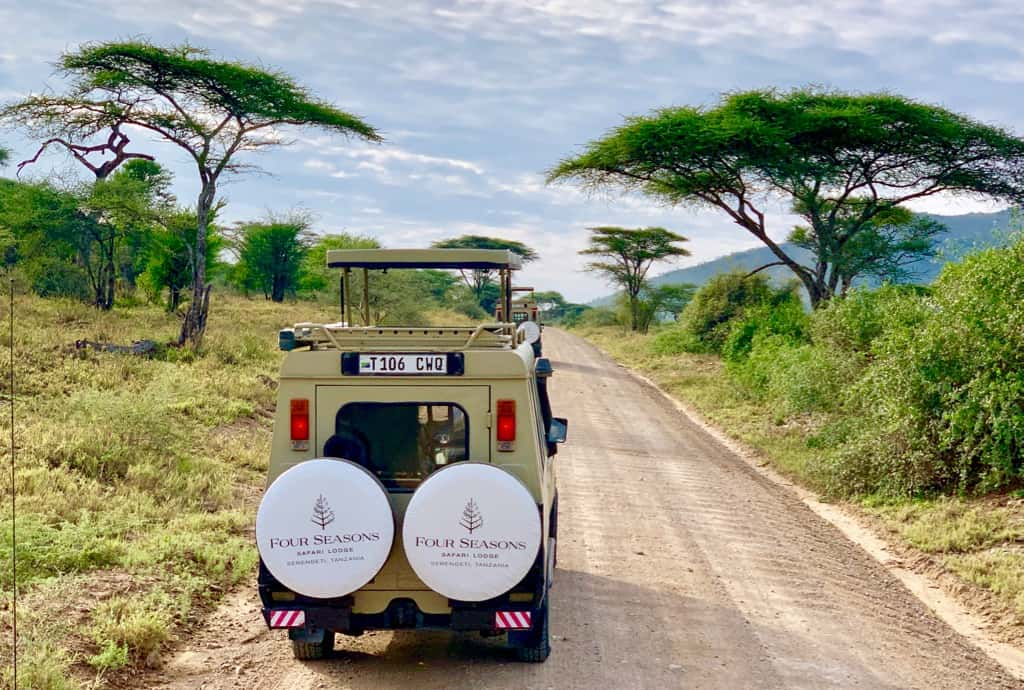 Luxury African safari, Serengeti safari, African adventures, African wildlife safari, luxury safari, visit the Serengeti, #Africa #Serengeti #Safari