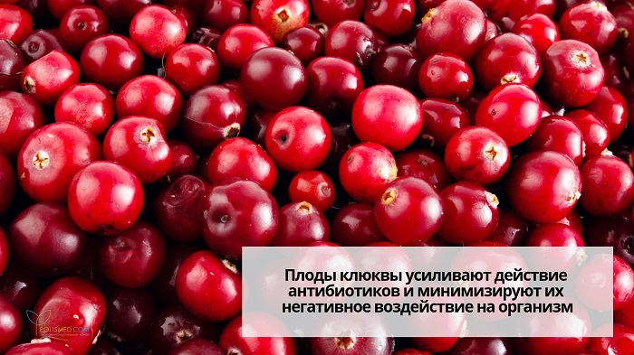 Cranberry berries.