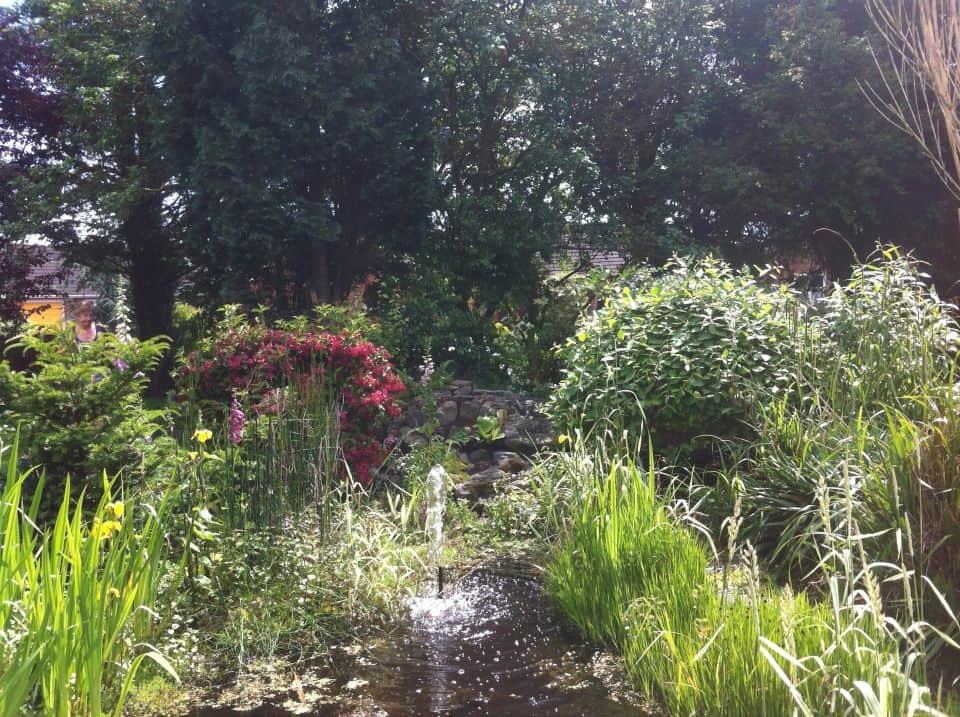 Pond Design Derbyshire