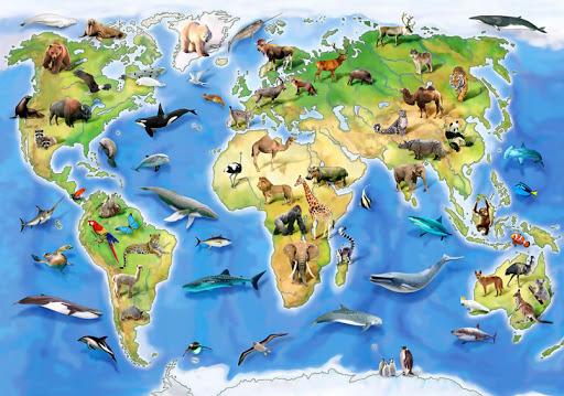 Животный мир планеты