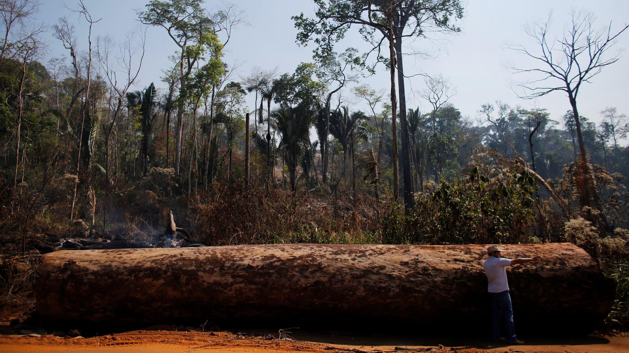 amazon rainforest location - HD2048×1152