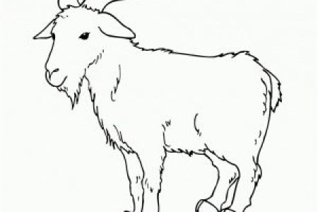 images of goat for colouring » Full HD MAPS Locations - Another ...