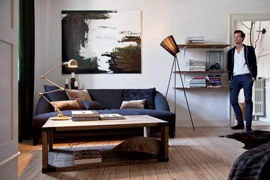 Apartment Decorating Male