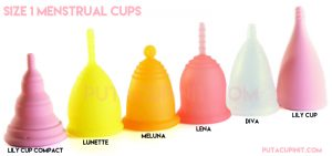 size1cups1-800x3761