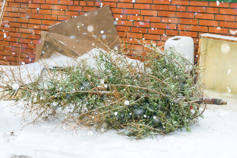 Winter Junk Removal Services