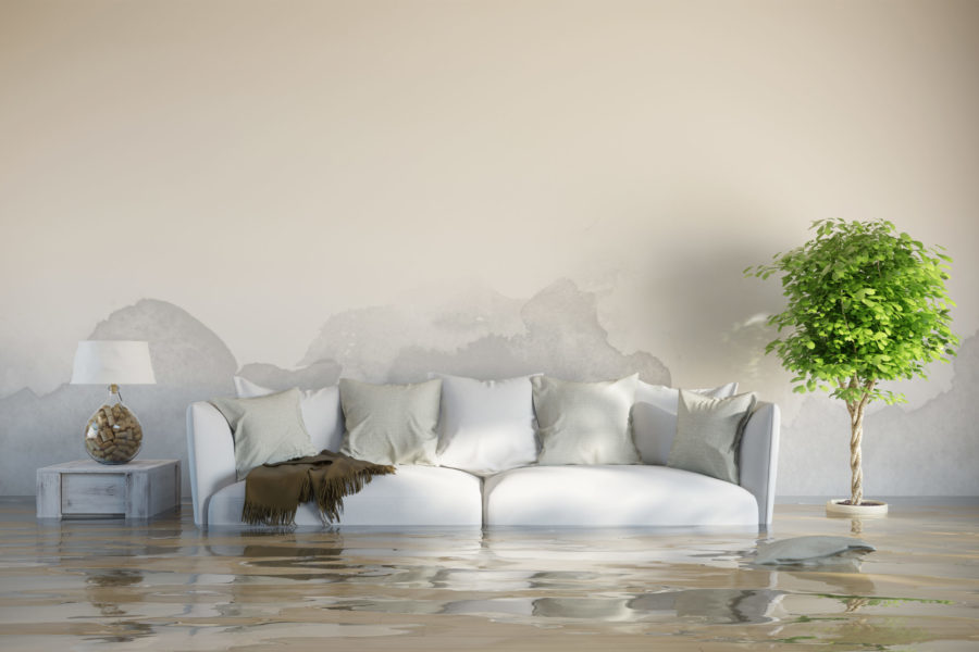 Basement Flooding? Let PWI Help with Your Clean-Up