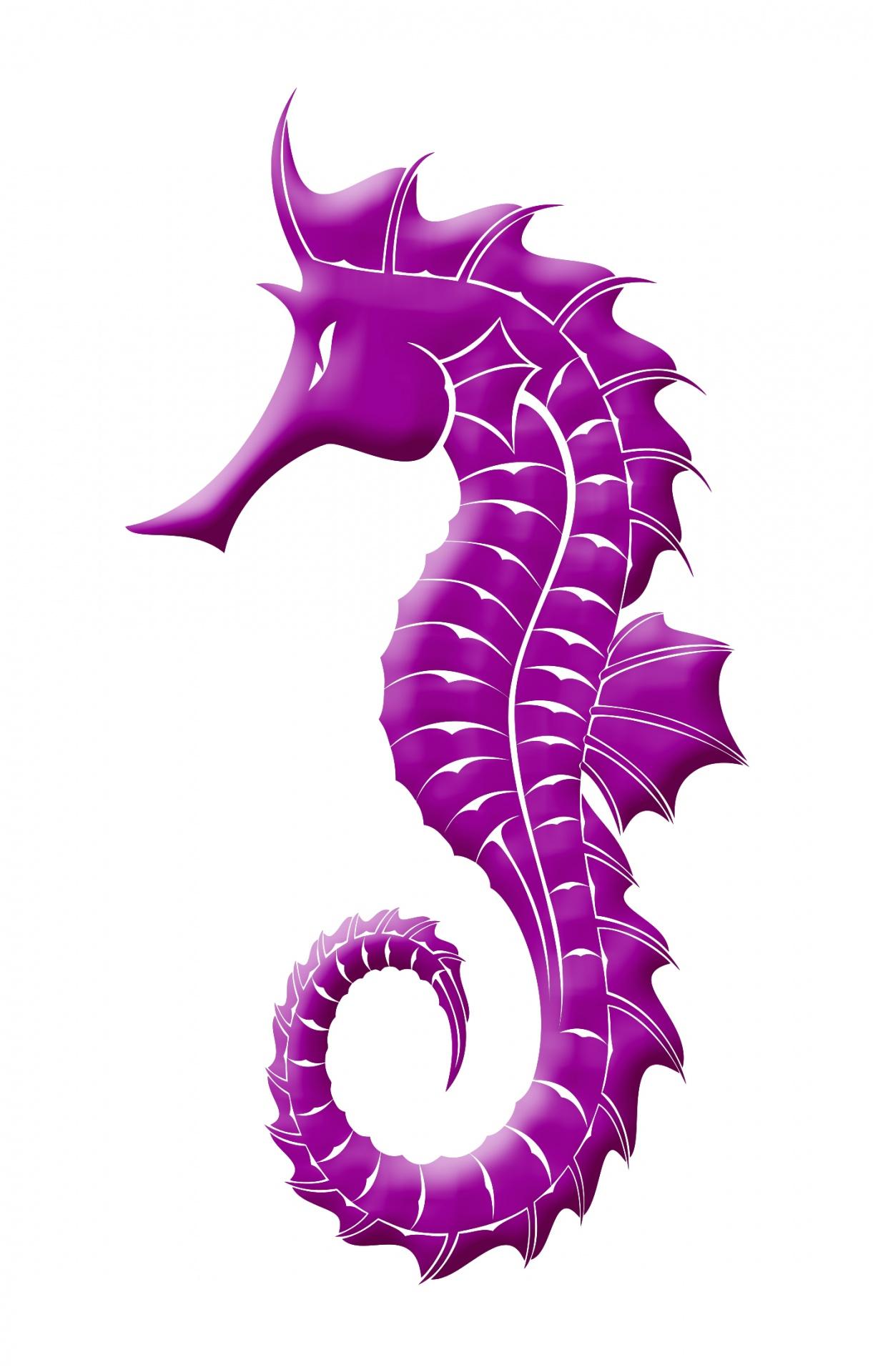 purple seahorse - HD1221×1920