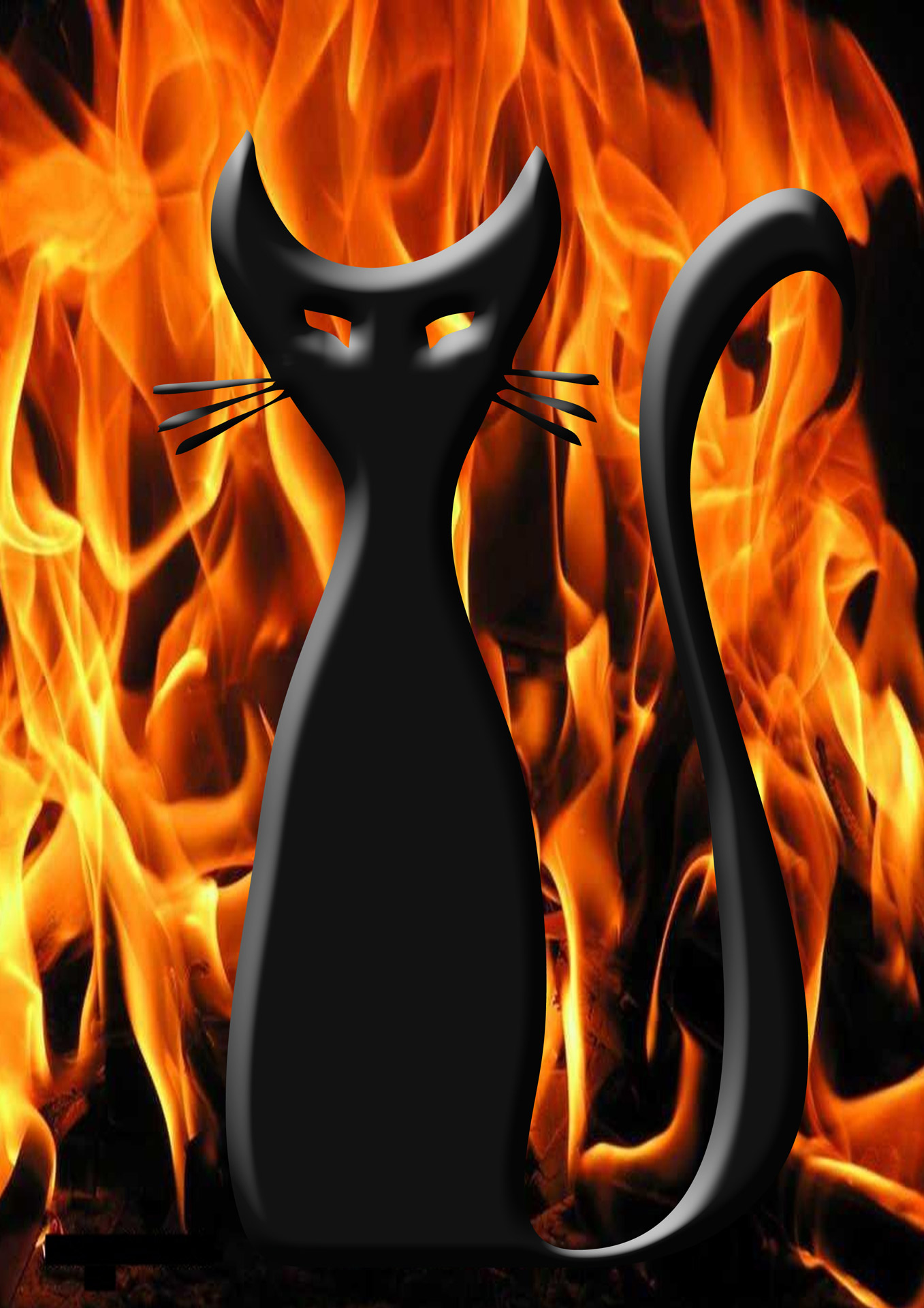 Evil Cat Free Stock Photo Public Domain Pictures