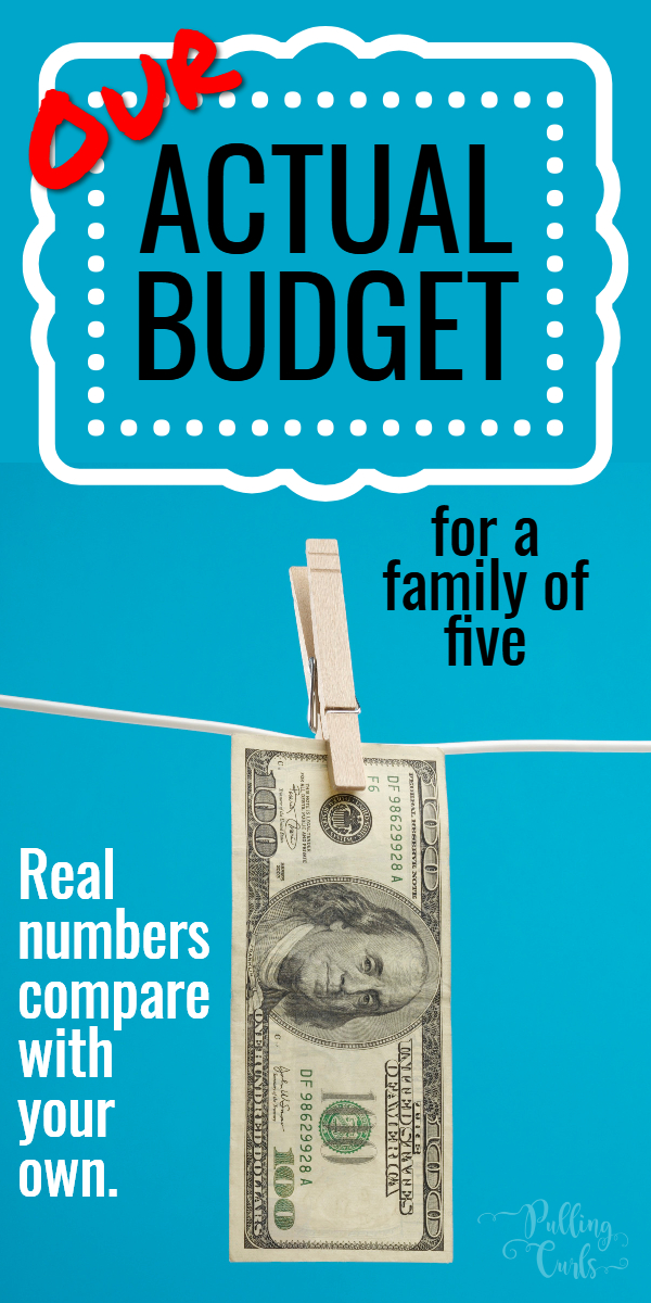 This is our REAL budget -- the actual numbers, and the actual totals we need to sustain our life. is it similar to yours? Come find out! #budget #budgets #finances via @pullingcurls
