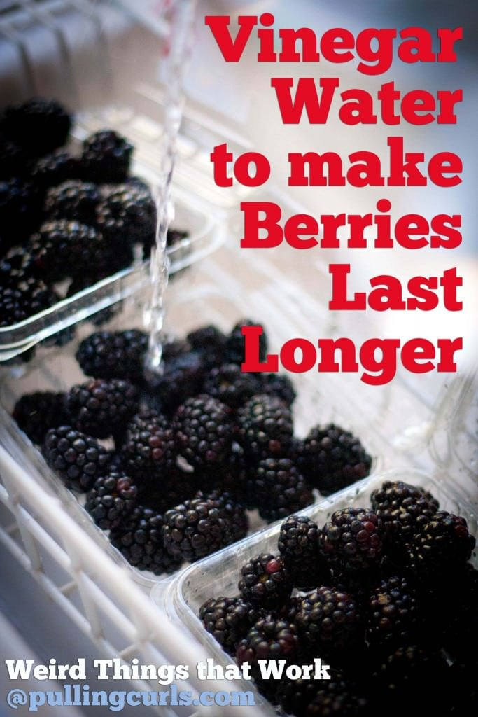 Berries last longer | vinegar | prevent mold|  rinse | raspberries | blackberries | blueberries | strawberries