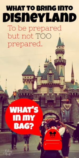 what should I bring to Disneyland for the day?