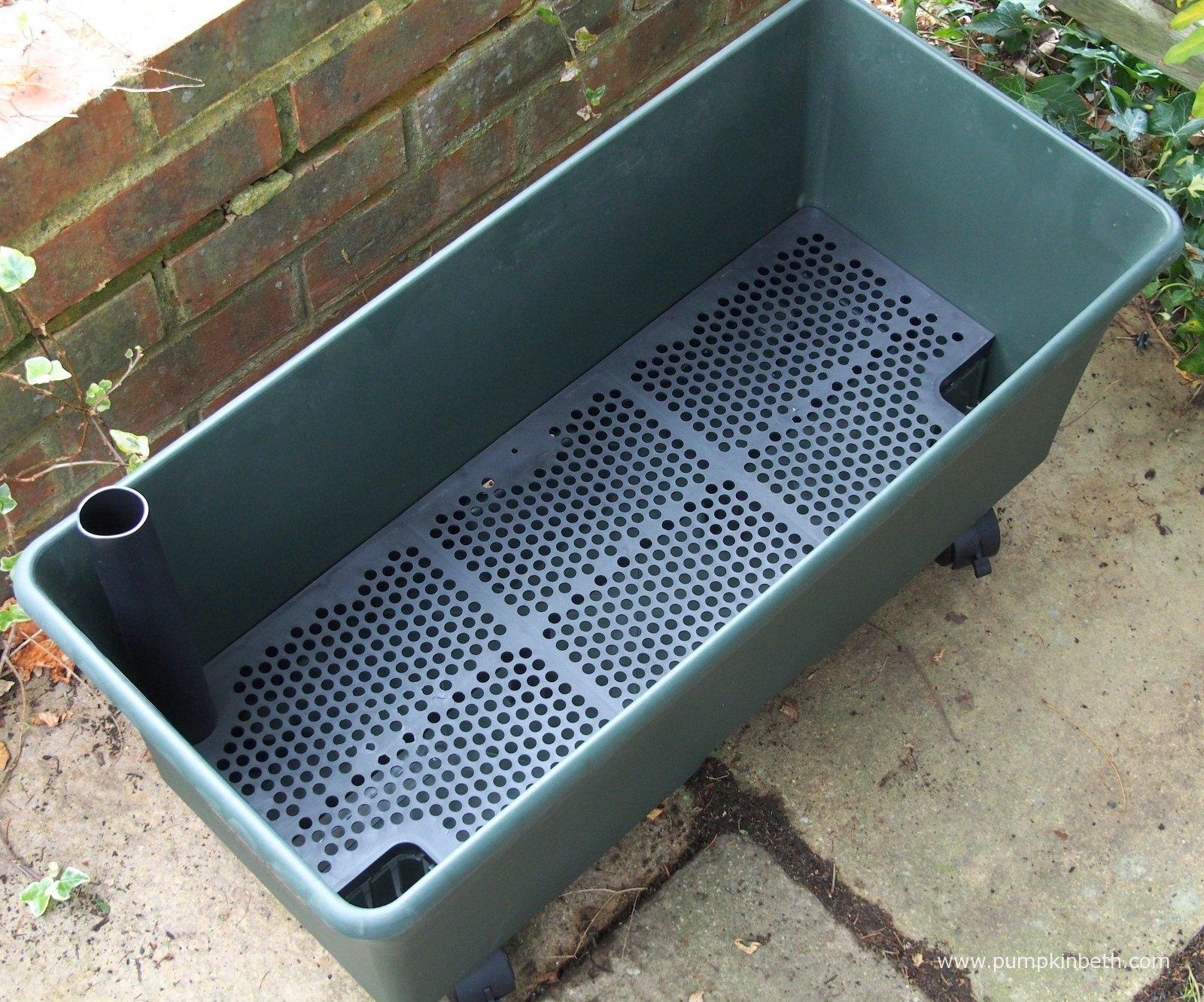 Setting Vegetable Garden Box