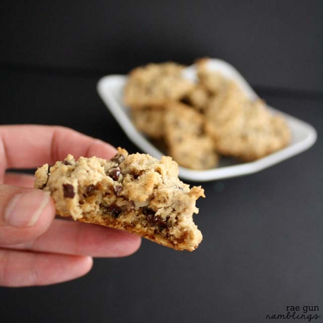 You won't believe this delicious chocolate chip cookie recipe also helps nursing moms boost their milk supply - Rae Gun Ramblings