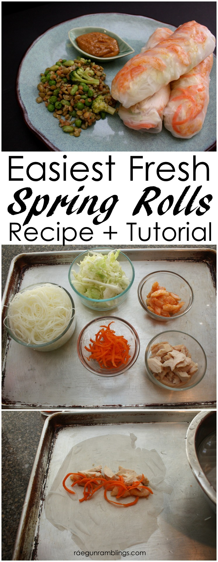 This Summer Roll recipe is so good. Super fast healthy meal idea full of veggies.